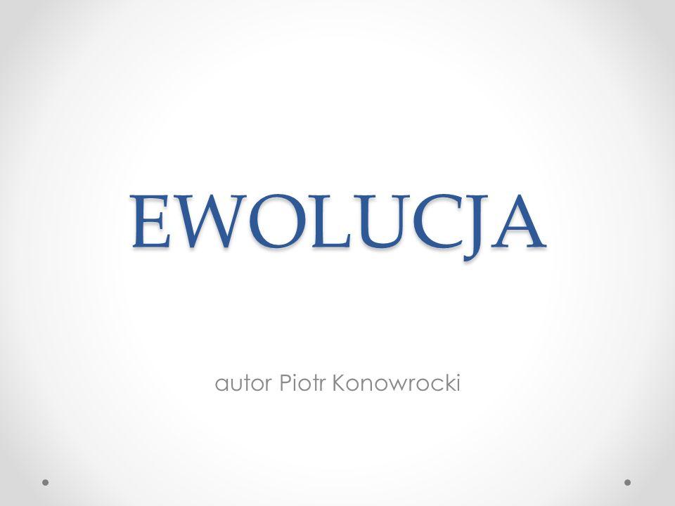 autor Piotr Konowrocki