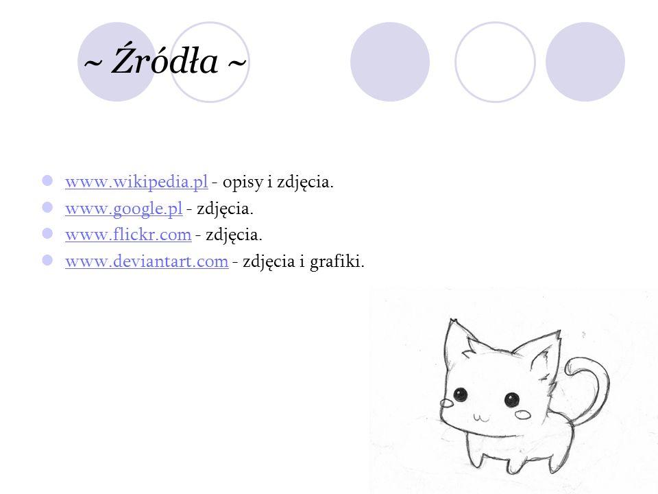 ~ Źródła ~ www.wikipedia.pl - opisy i zdjęcia.