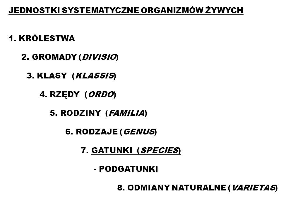 JEDNOSTKI SYSTEMATYCZNE ORGANIZMÓW ŻYWYCH