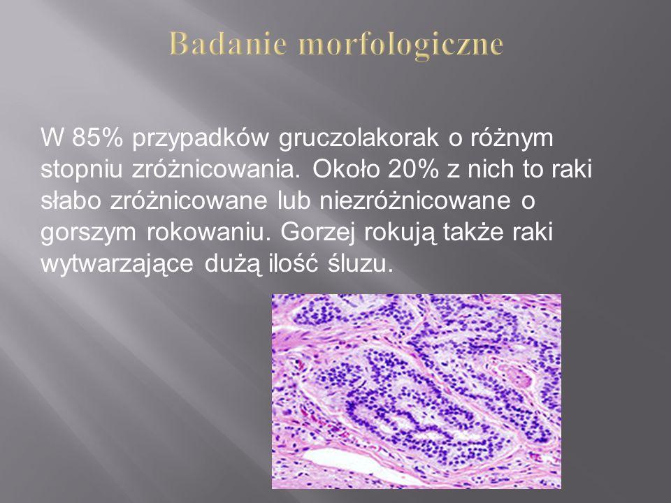 Badanie morfologiczne