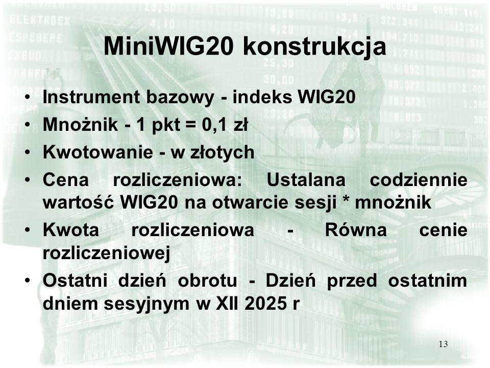 MiniWIG20 konstrukcja Instrument bazowy - indeks WIG20