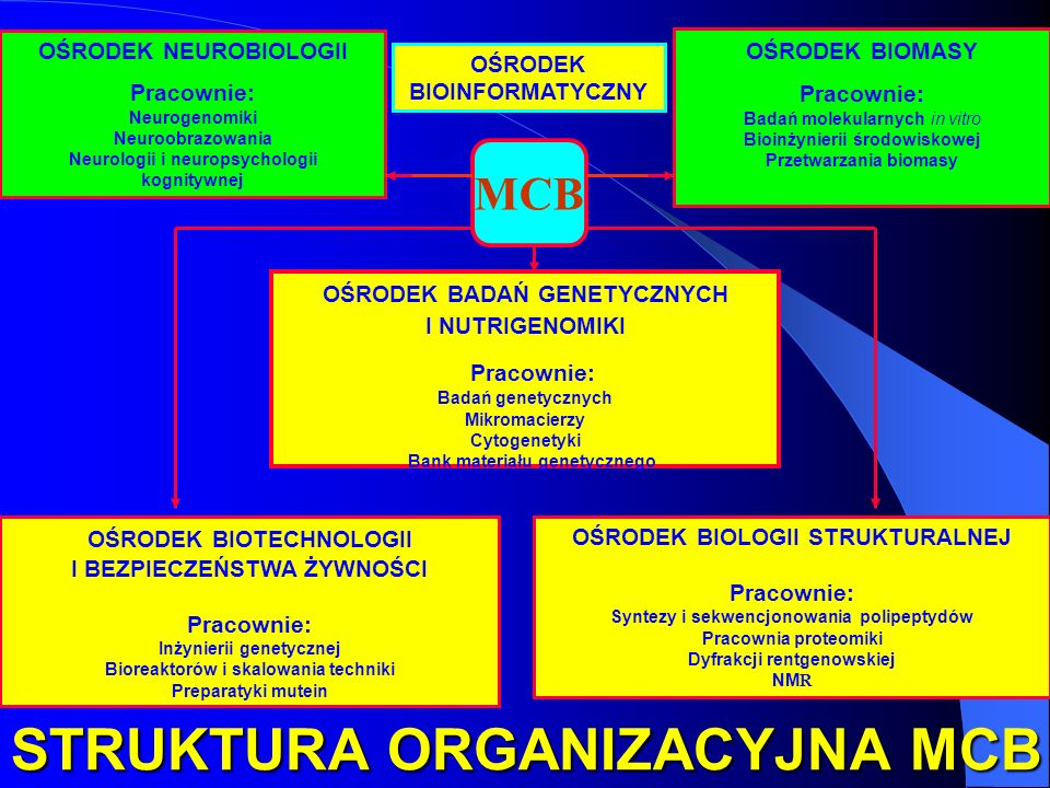 STRUKTURA ORGANIZACYJNA MCB