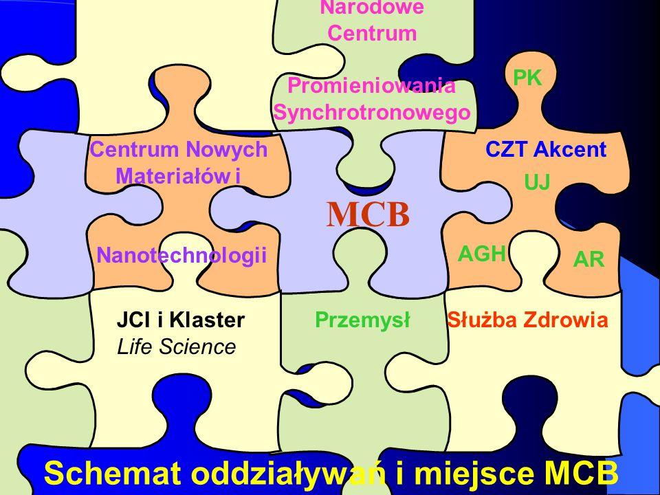 Centrum Nowych Materiałów i
