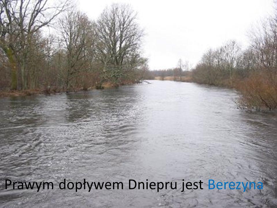Prawym dopływem Dniepru jest Berezyna