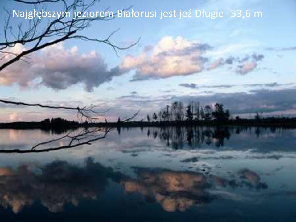 Najgłębszym jeziorem Białorusi jest jeź Długie -53,6 m