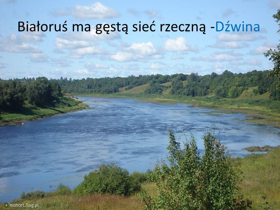 Białoruś ma gęstą sieć rzeczną -Dźwina