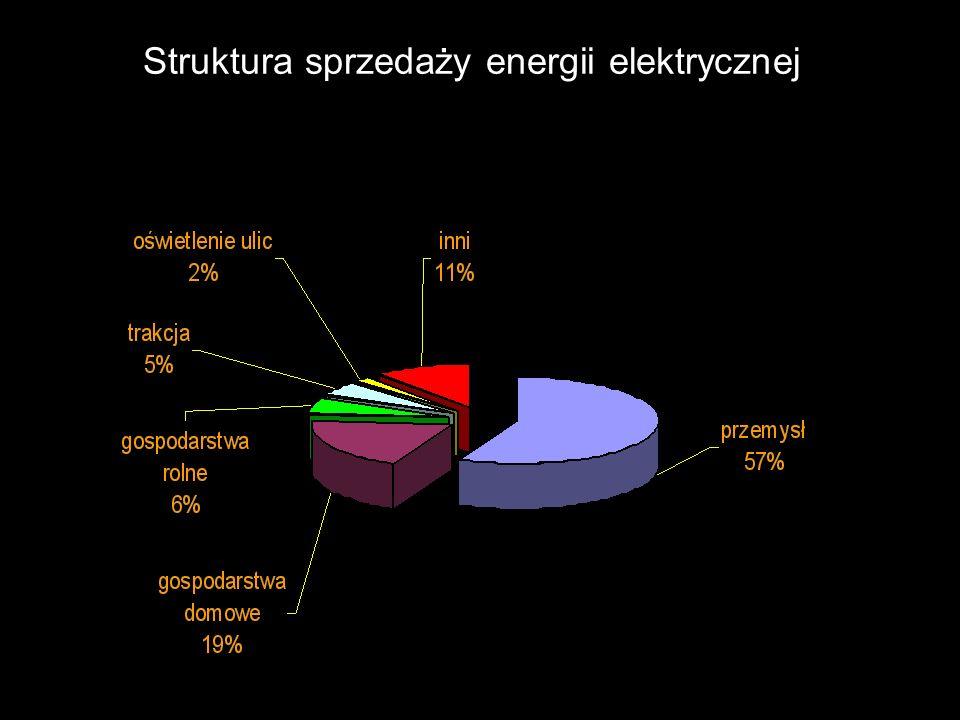 Struktura sprzedaży energii elektrycznej