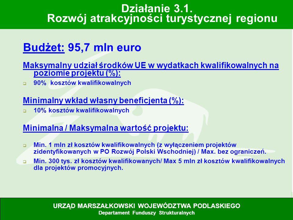Działanie 3.1. Rozwój atrakcyjności turystycznej regionu