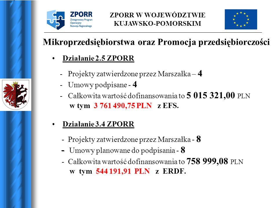 Mikroprzedsiębiorstwa oraz Promocja przedsiębiorczości