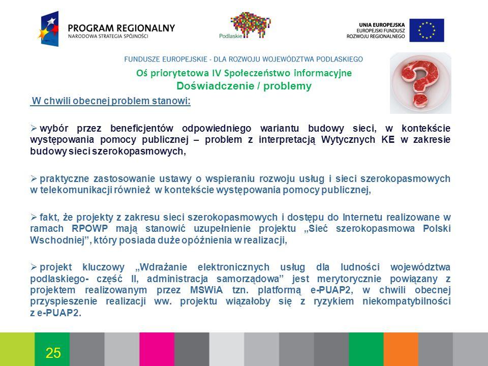 Oś priorytetowa IV Społeczeństwo informacyjne Doświadczenie / problemy