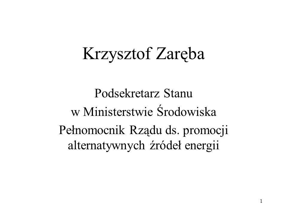 Krzysztof Zaręba Podsekretarz Stanu w Ministerstwie Środowiska