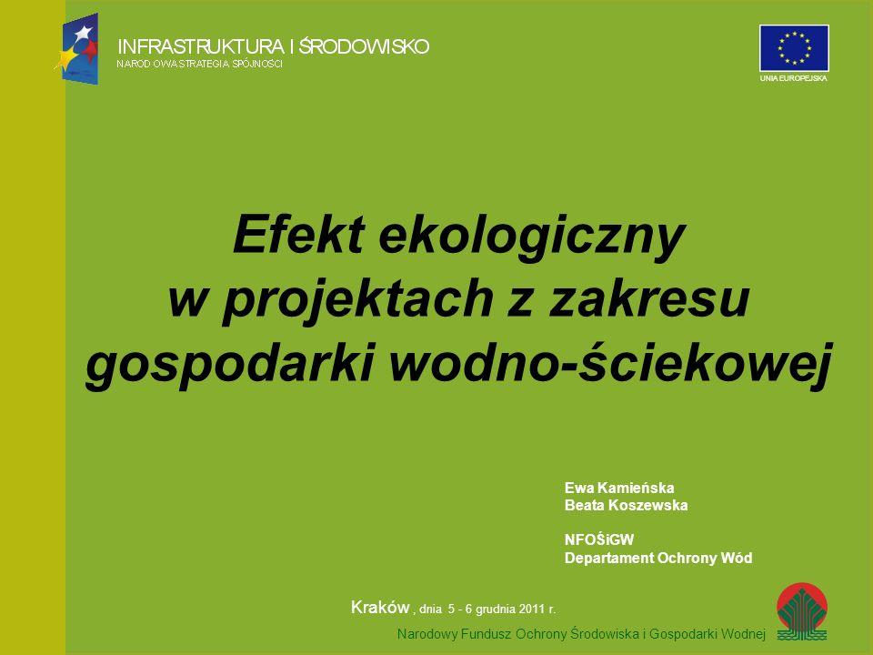 Efekt ekologiczny w projektach z zakresu gospodarki wodno-ściekowej