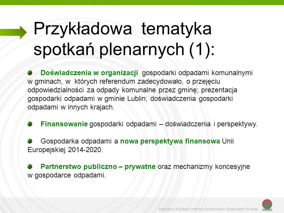 Przykładowa tematyka spotkań plenarnych (1):