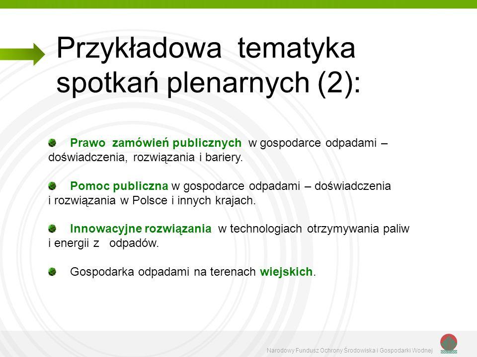 Przykładowa tematyka spotkań plenarnych (2):