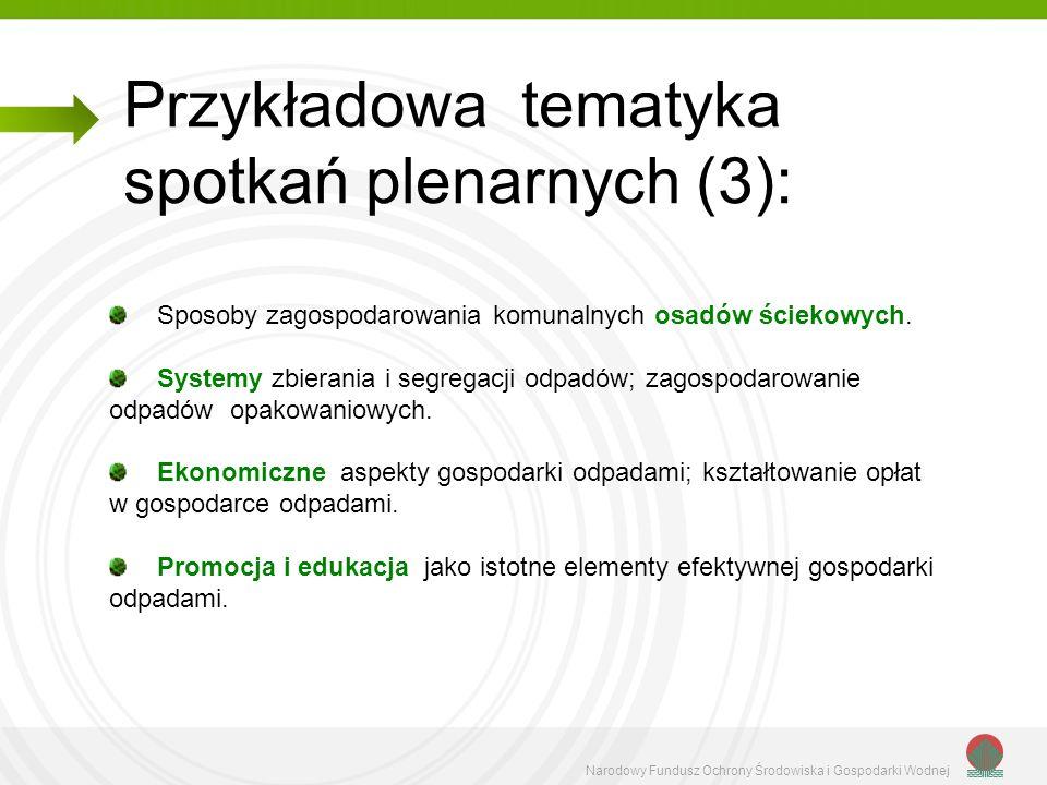 Przykładowa tematyka spotkań plenarnych (3):