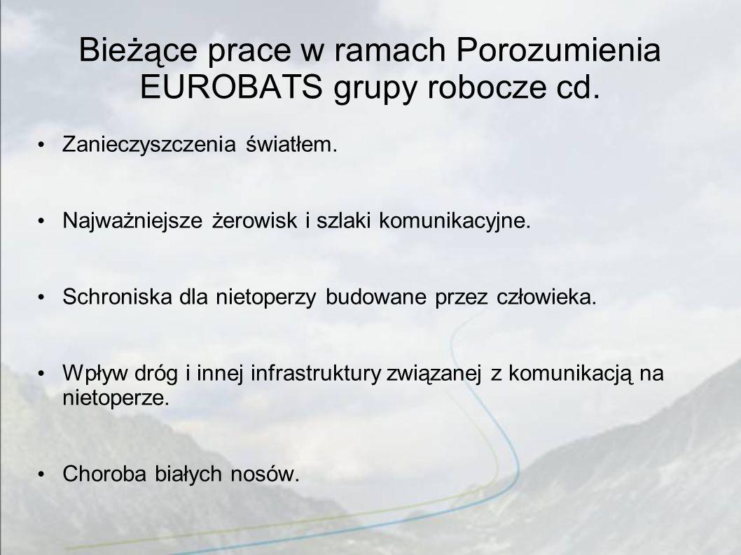 Bieżące prace w ramach Porozumienia EUROBATS grupy robocze cd.