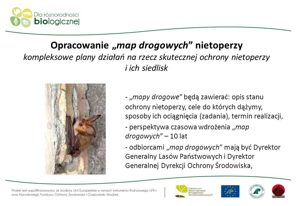 """Opracowanie """"map drogowych nietoperzy kompleksowe plany działań na rzecz skutecznej ochrony nietoperzy i ich siedlisk"""