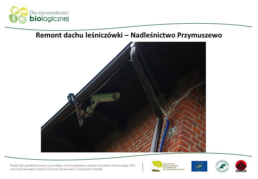 Remont dachu leśniczówki – Nadleśnictwo Przymuszewo