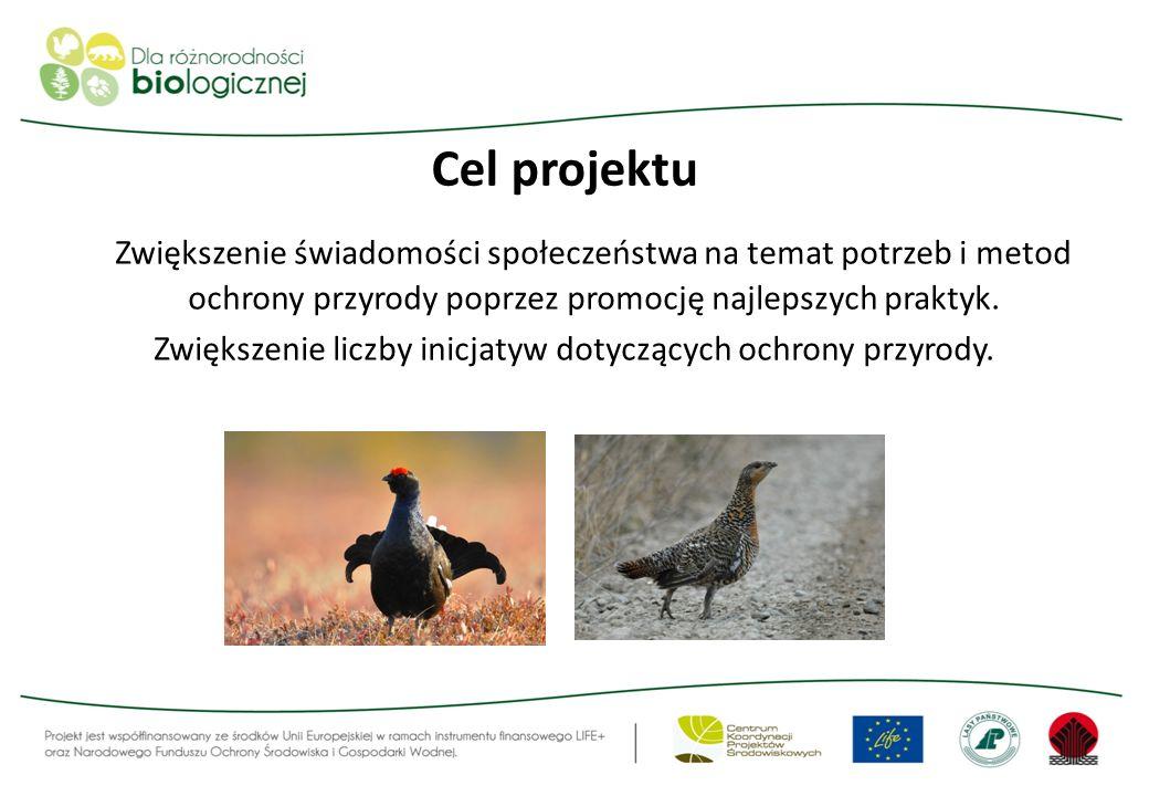 Zwiększenie liczby inicjatyw dotyczących ochrony przyrody.