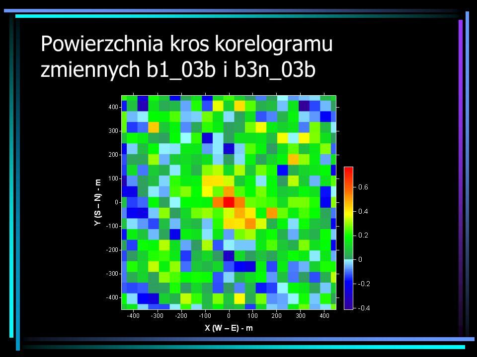 Powierzchnia kros korelogramu zmiennych b1_03b i b3n_03b