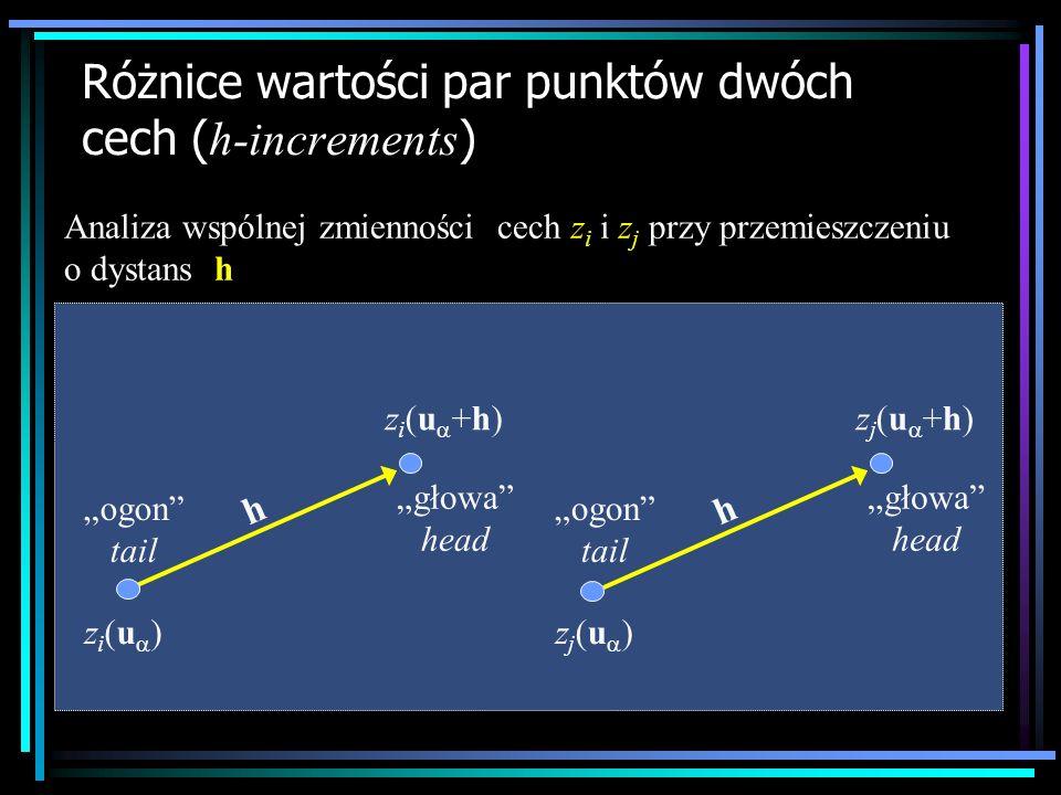 Różnice wartości par punktów dwóch cech (h-increments)