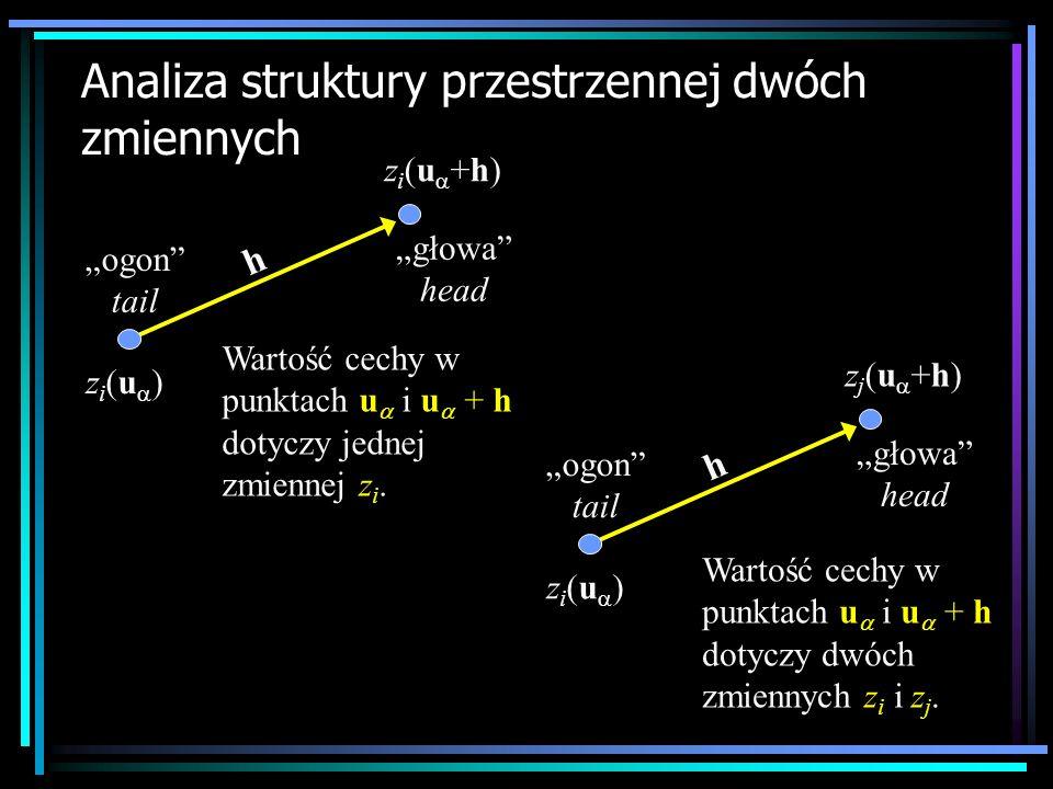 Analiza struktury przestrzennej dwóch zmiennych