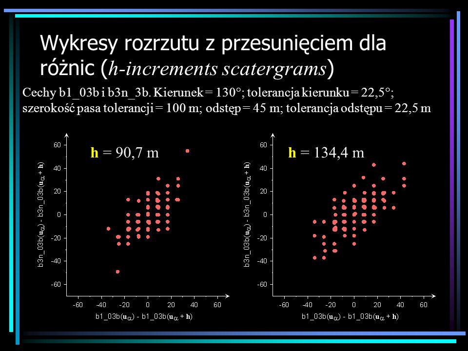 Wykresy rozrzutu z przesunięciem dla różnic (h-increments scatergrams)