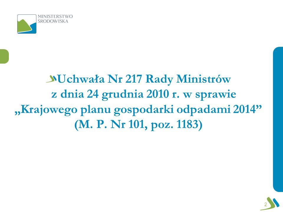 Uchwała Nr 217 Rady Ministrów z dnia 24 grudnia 2010 r. w sprawie