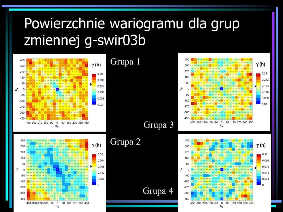 Powierzchnie wariogramu dla grup zmiennej g-swir03b