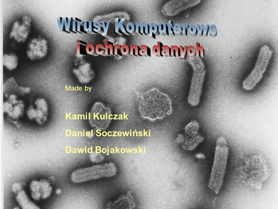 Wirusy Komputerowe i ochrona danych Kamil Kulczak Daniel Soczewiński