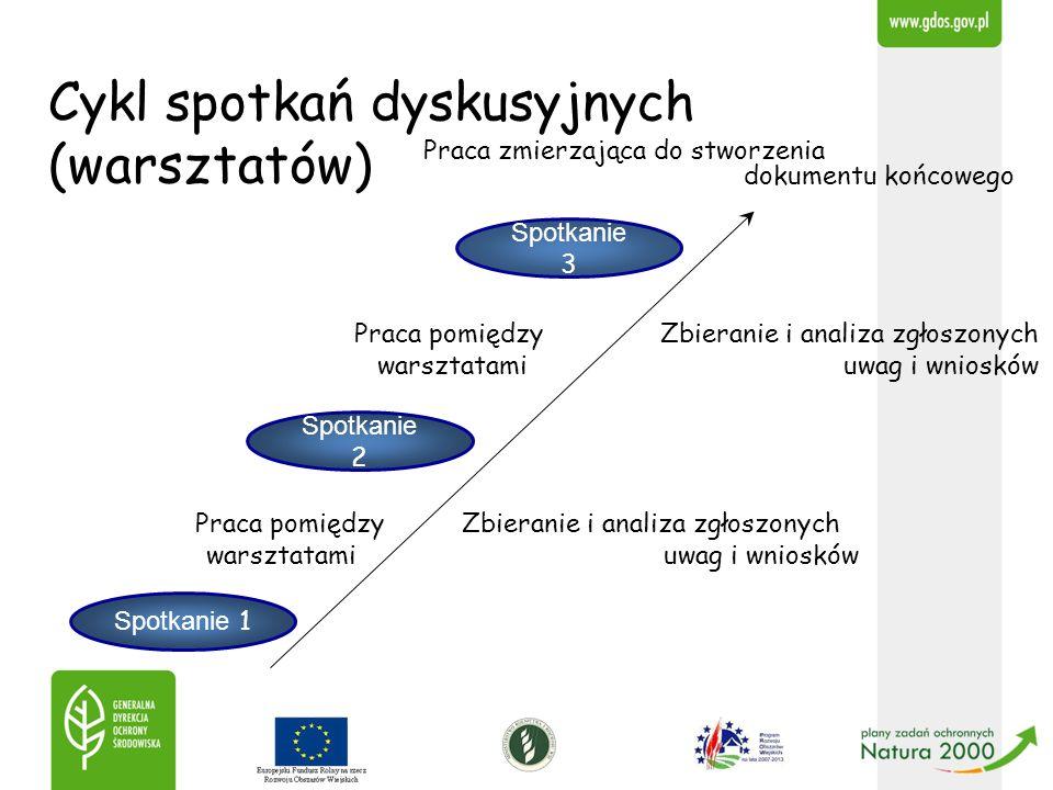 Cykl spotkań dyskusyjnych (warsztatów)