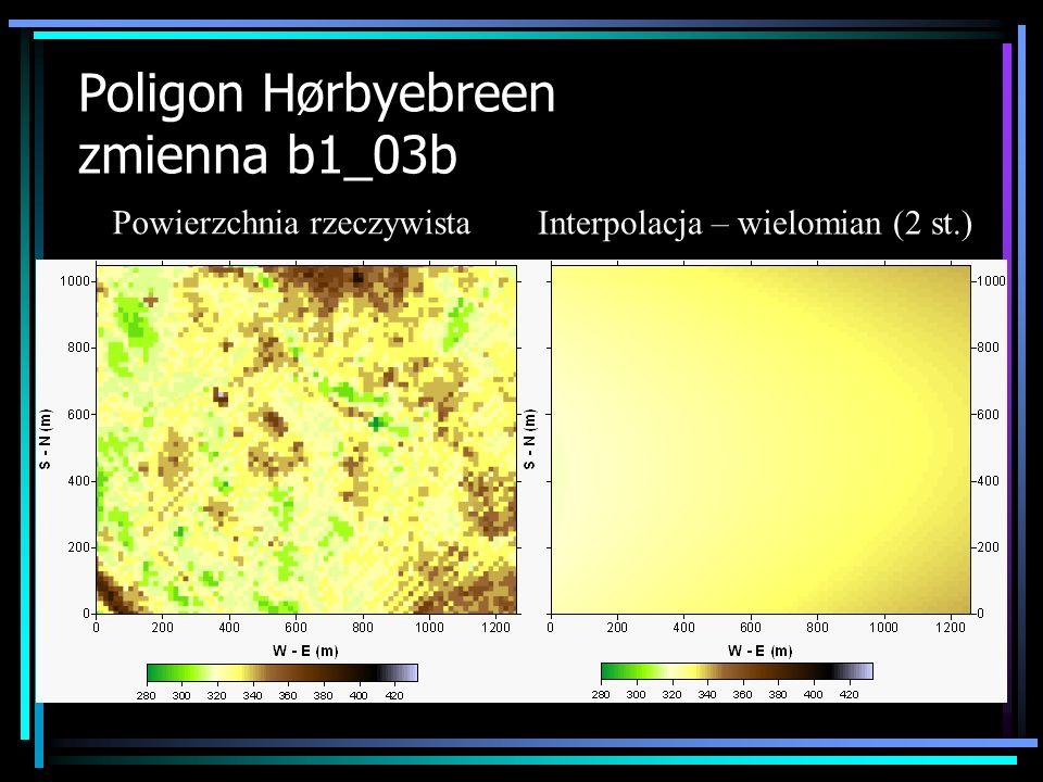 Poligon Hørbyebreen zmienna b1_03b