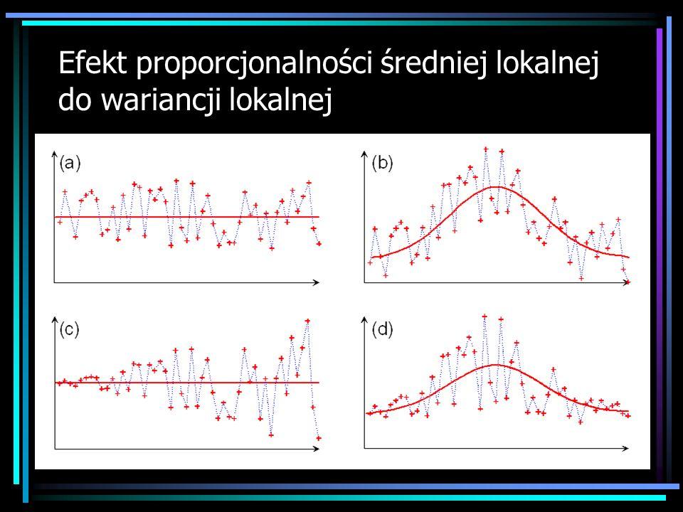 Efekt proporcjonalności średniej lokalnej do wariancji lokalnej