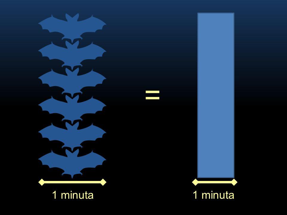 1 minuta = 1 minuta