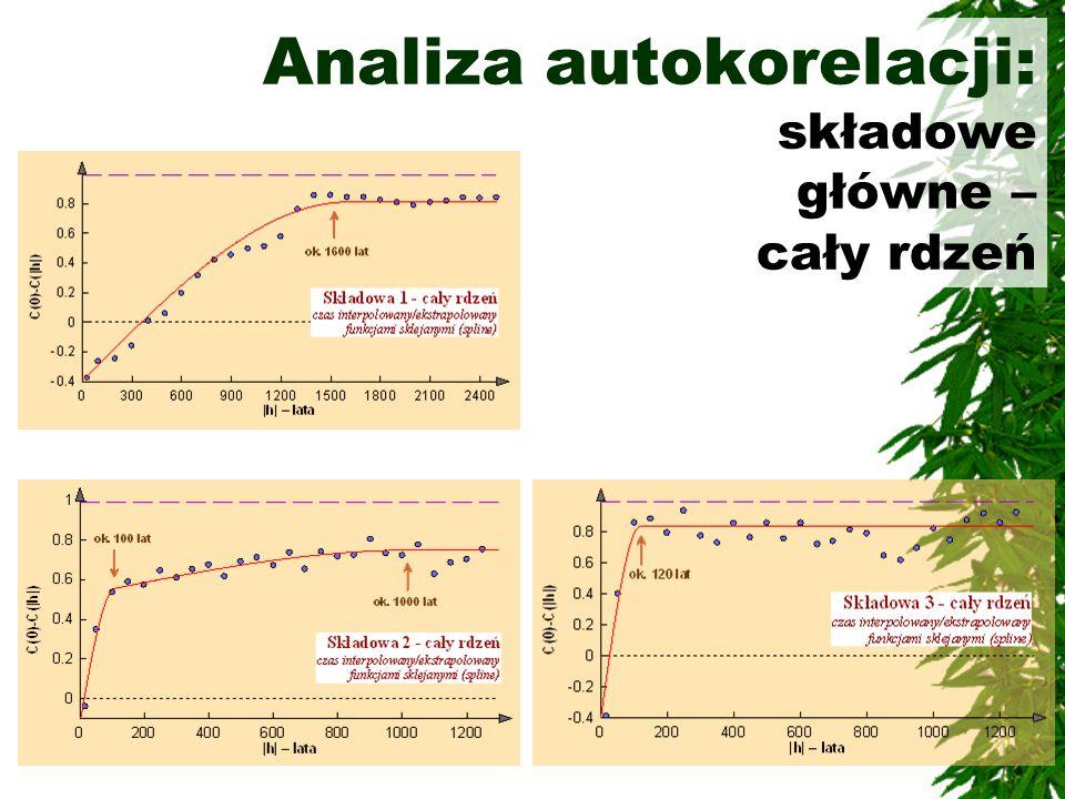 Analiza autokorelacji: składowe główne – cały rdzeń