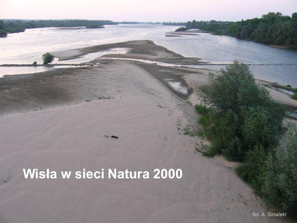Wisła w sieci Natura 2000 fot. A. Ginalski