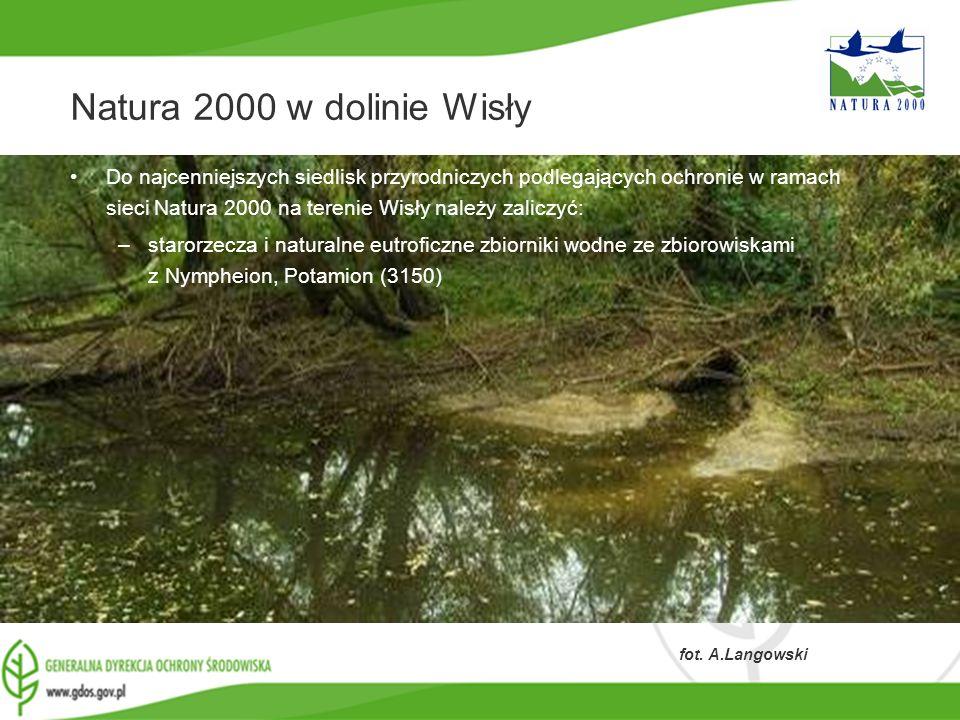 Natura 2000 w dolinie Wisły