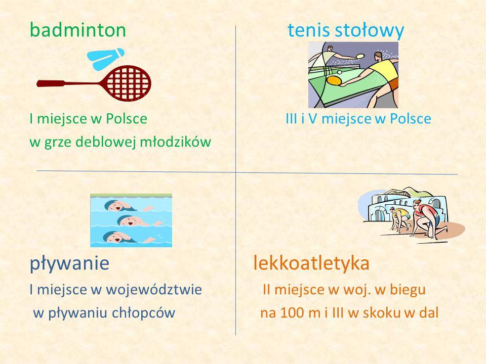 badminton tenis stołowy