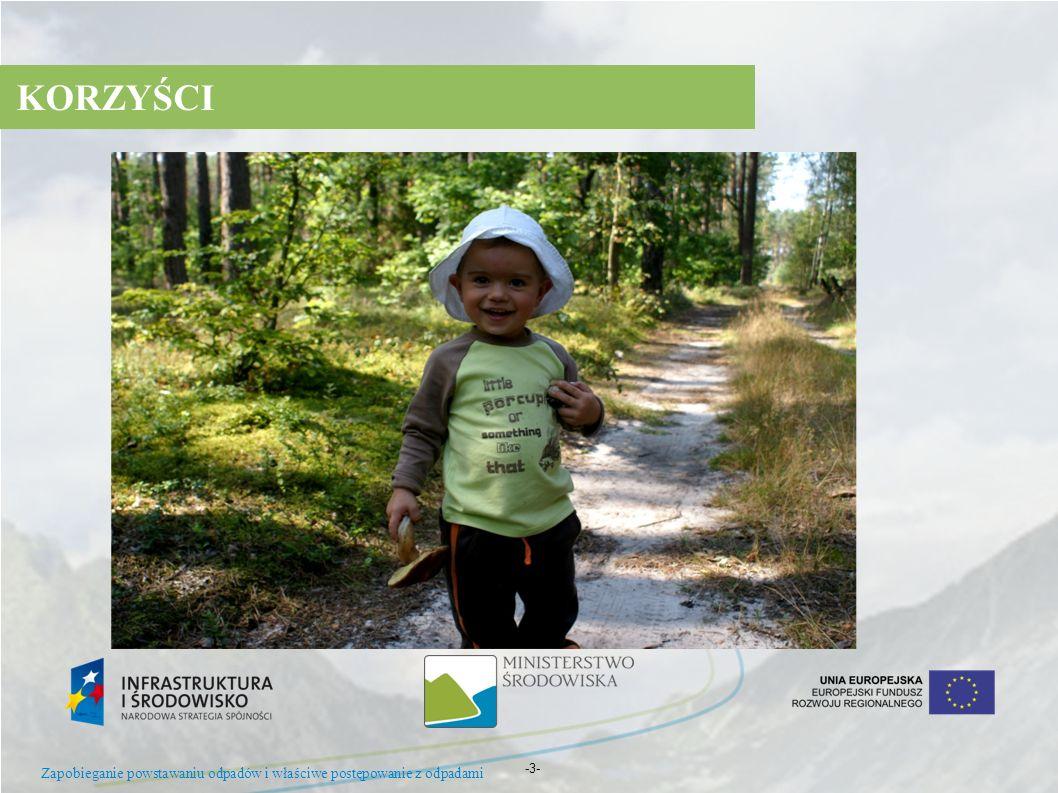KORZYŚCI Zapobieganie powstawaniu odpadów i właściwe postępowanie z odpadami -3- 15