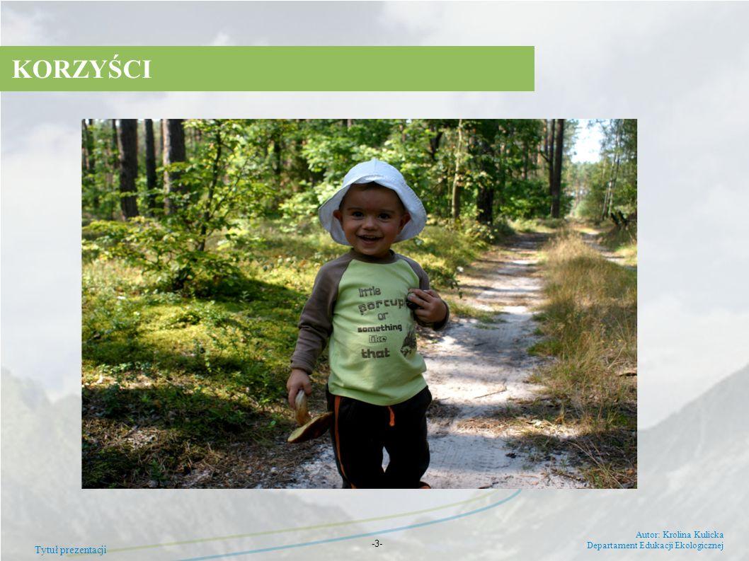 KORZYŚCI 7 Tytuł prezentacji Autor: Krolina Kulicka
