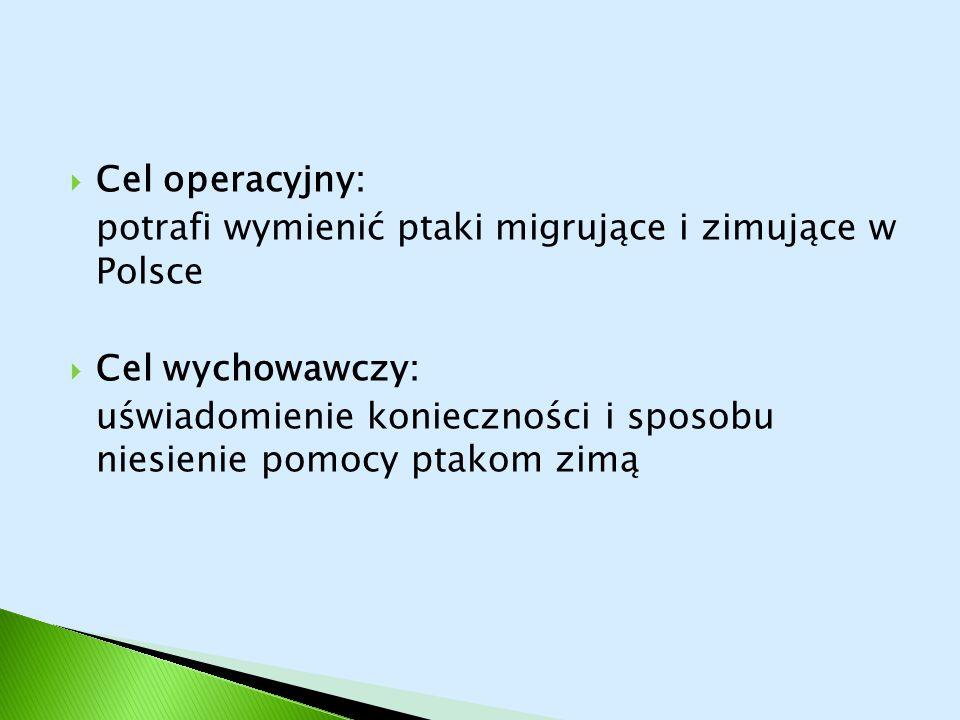 Cel operacyjny: potrafi wymienić ptaki migrujące i zimujące w Polsce. Cel wychowawczy:
