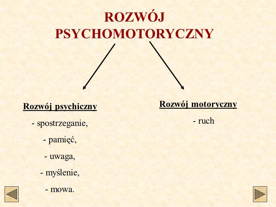 ROZWÓJ PSYCHOMOTORYCZNY