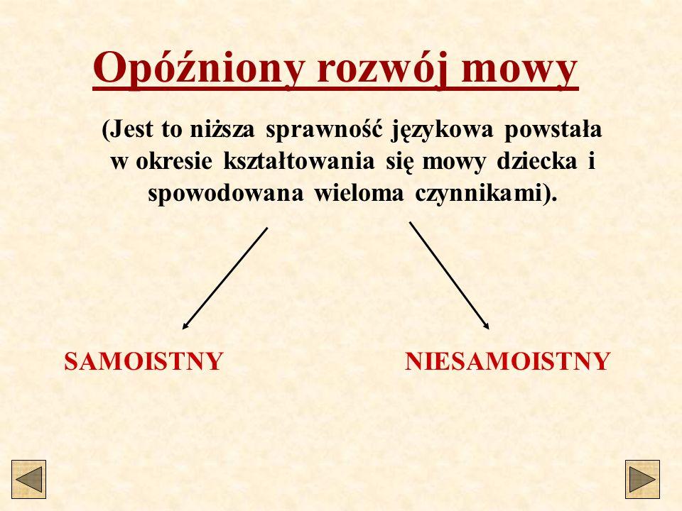 Opóźniony rozwój mowy (Jest to niższa sprawność językowa powstała w okresie kształtowania się mowy dziecka i spowodowana wieloma czynnikami).