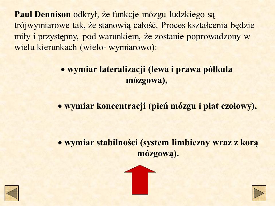 wymiar lateralizacji (lewa i prawa półkula mózgowa),