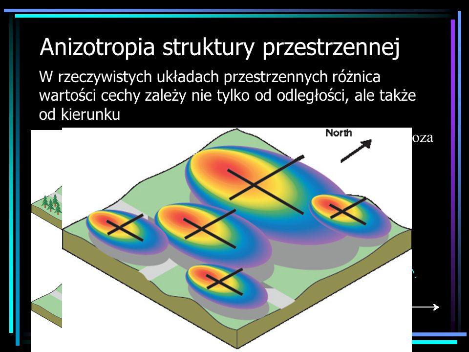 Anizotropia struktury przestrzennej