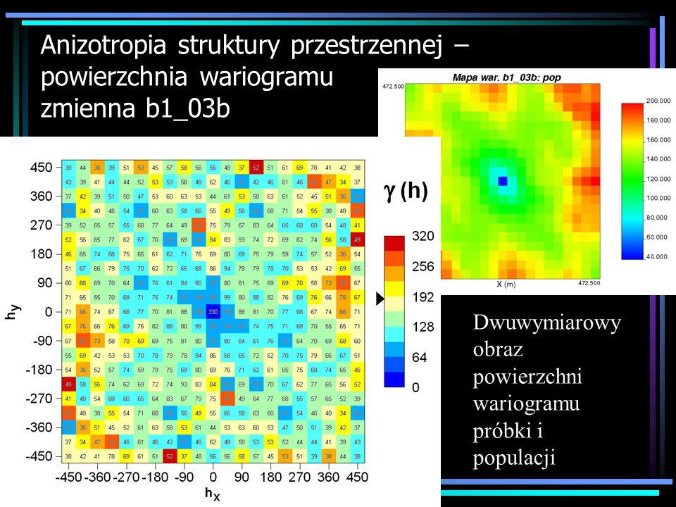 Anizotropia struktury przestrzennej – powierzchnia wariogramu zmienna b1_03b