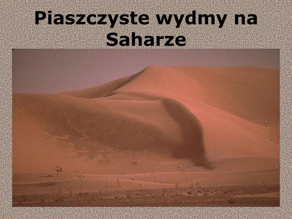Piaszczyste wydmy na Saharze