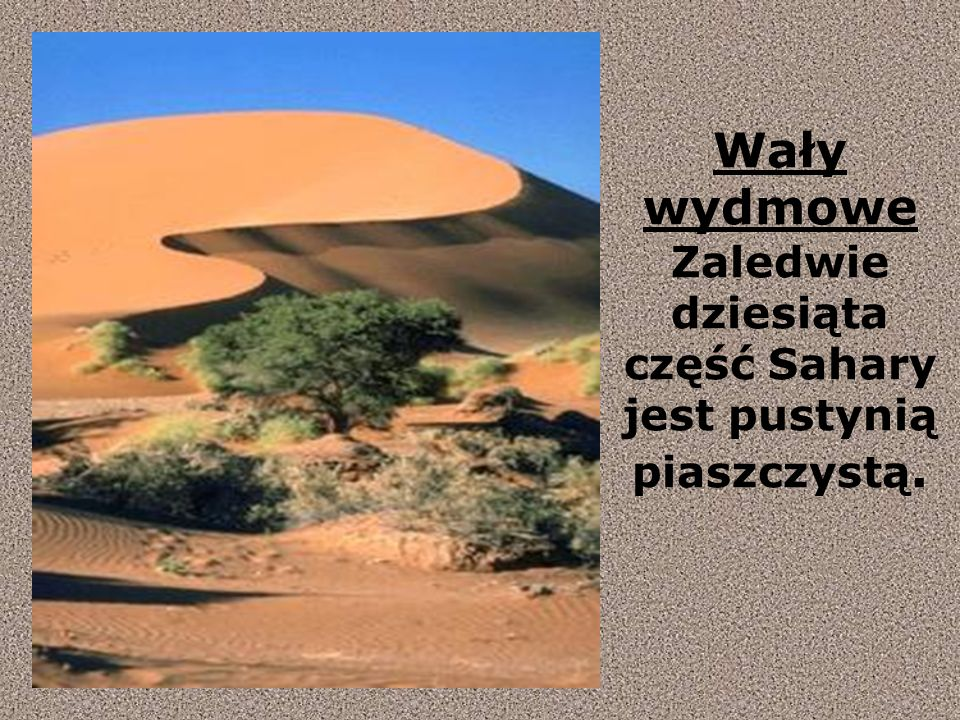 Wały wydmowe Zaledwie dziesiąta część Sahary jest pustynią piaszczystą.