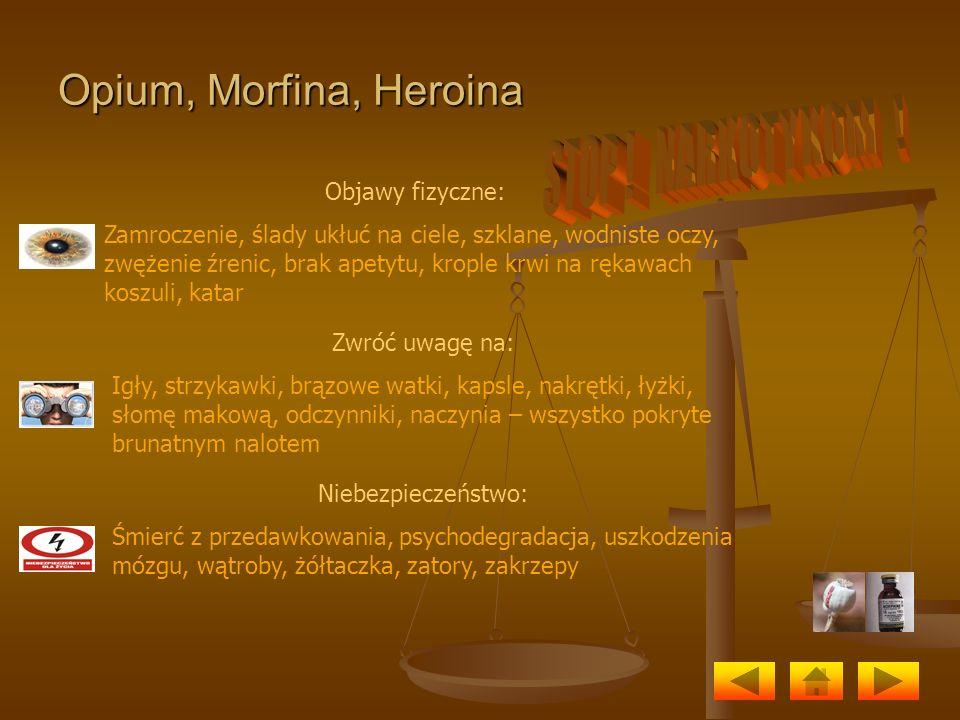 STOP ! NARKOTYKOM ! Opium, Morfina, Heroina Objawy fizyczne: