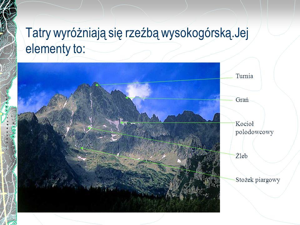 Tatry wyróżniają się rzeźbą wysokogórską.Jej elementy to: